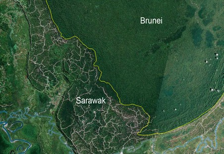 If ever you needed proof this satellite picture shows the comparison of the slashed hills of Sarawak with the lush forest of neighbouring Brunei, ironicly protected by its oil wealth.