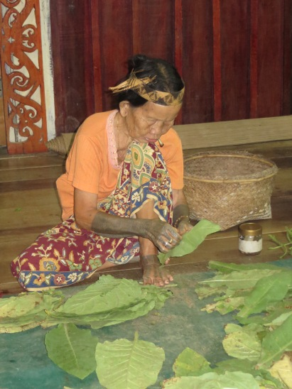 You will regularly see women puffing away on hand rolled cigarettes. Here a lady prepares tobacco leaves for drying