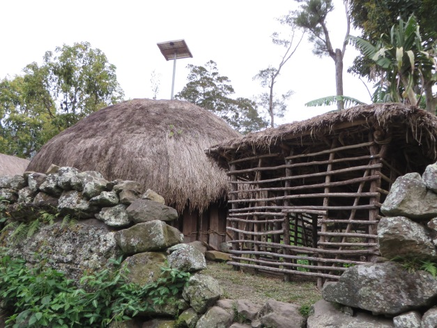 Thatched hut and solar panel - a classic combination