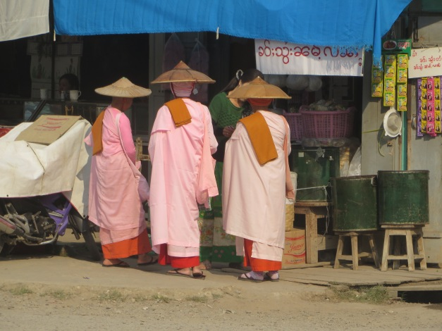 The nice side of Buddhism - nuns collecting alms