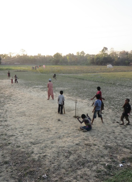 The dusty rural idyll of cricket on the paddy field