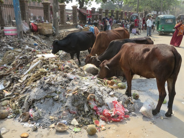 Organic waste processing units next to homeless encampment in Chittagong
