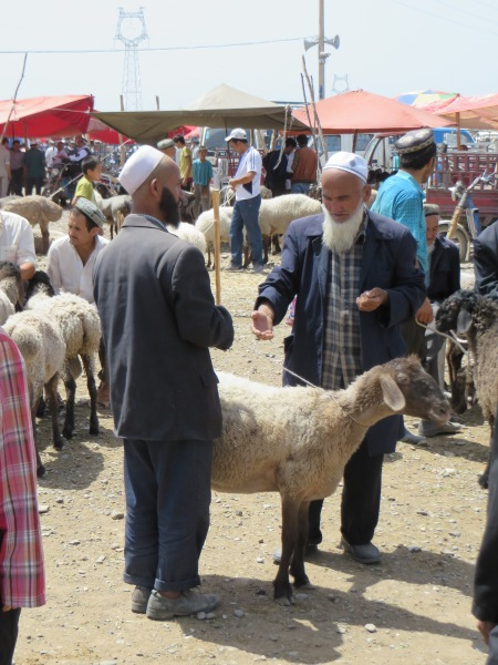 Why not discuss the price of sheep with these nice men at the Kashgar livestock market in China?