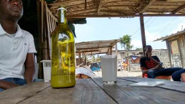 Palm wine's view of the world
